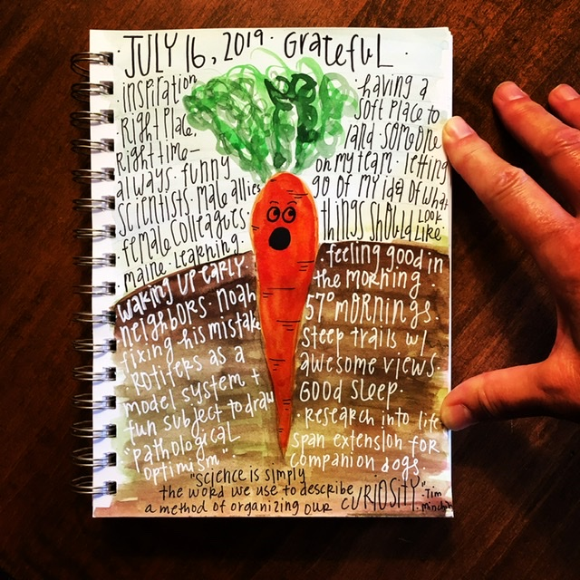 Watercolor gratitude list-carrot